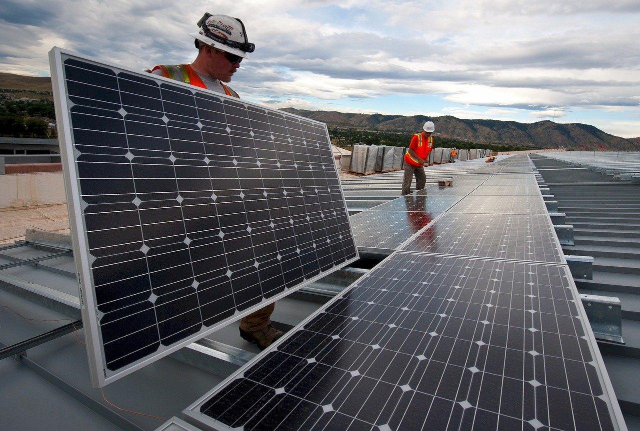 Jak zamówić panele od Trina Solar?